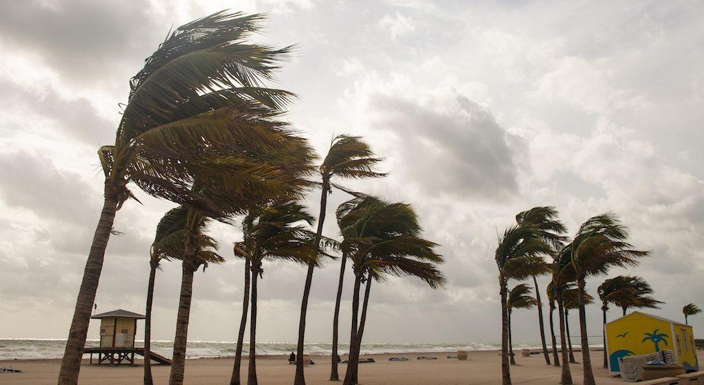 EDM Monday Briefing: Tropical Storm Cristobal Makes Landfall Sunday