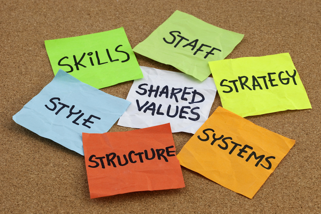 Improving Organizational Culture Begins at Hiring Employees