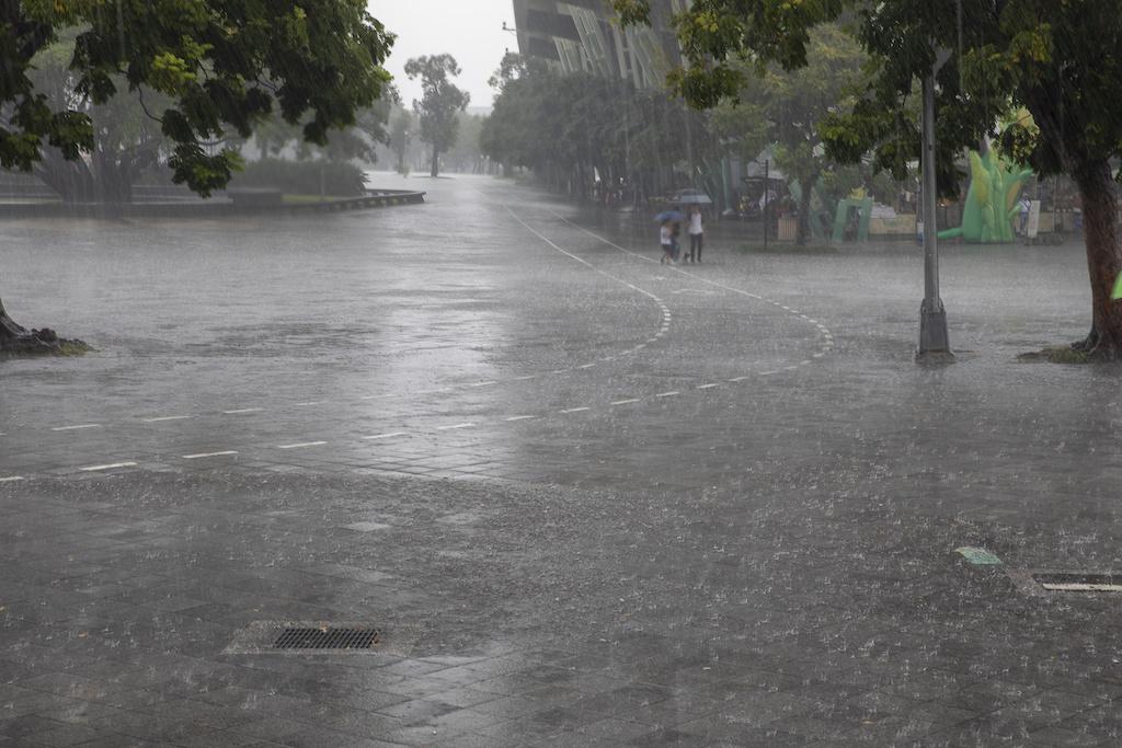 Typhoon Hagibis: Another Case of Broken Levees?