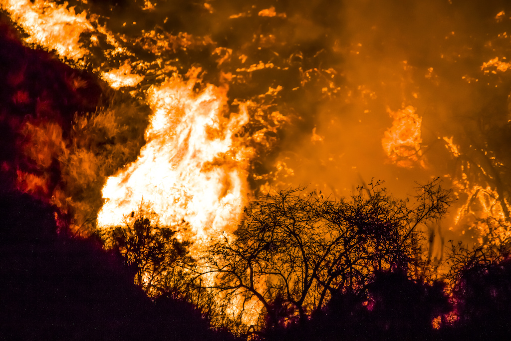 EDM Monday Briefing: California's Glass Fire Erupts into Major Wildfire
