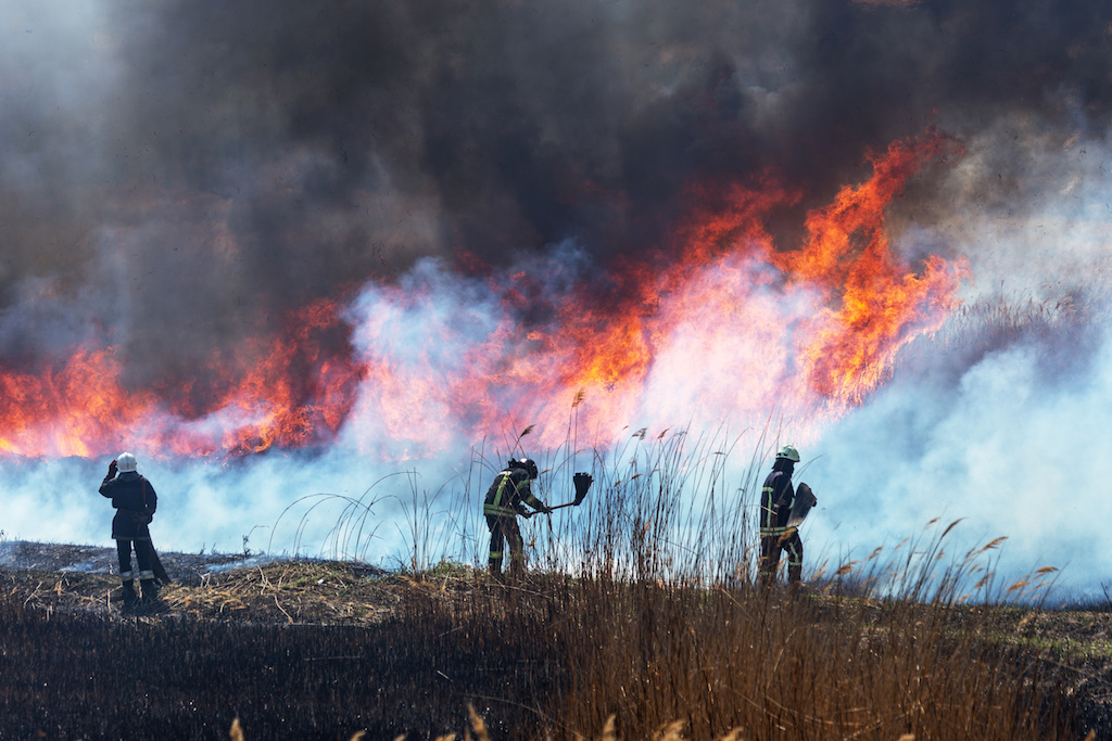US Must Act to Control the Growing Number of Wildfires