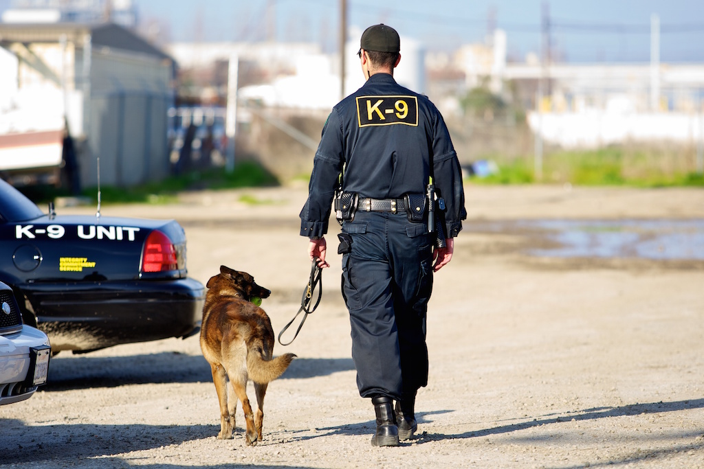 Connecticut K-9 Officer Transportation Bill Can Affect EMS
