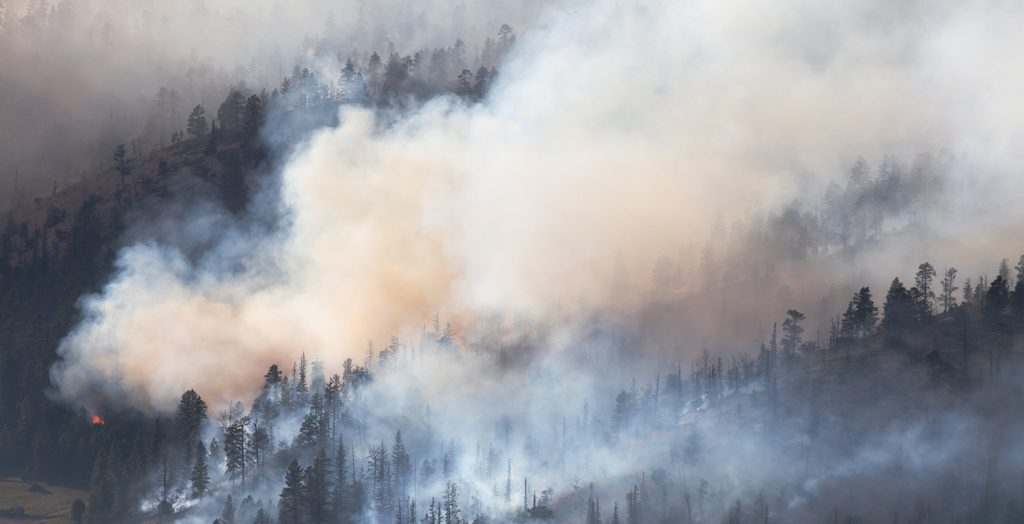 EDM Wednesday Briefing: Evacuation Orders Lifted for Veyo West Fire