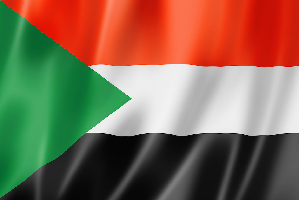 Sudan's Longtime President Falls in a Military Coup