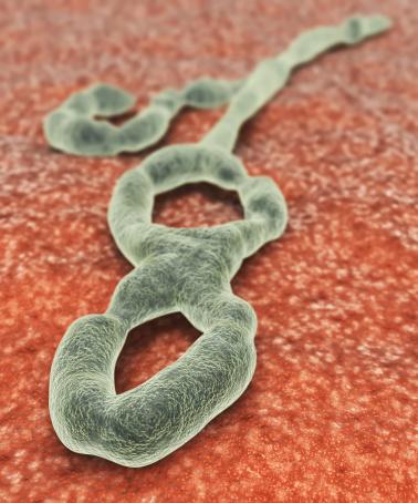 Ebola-CDC-containment