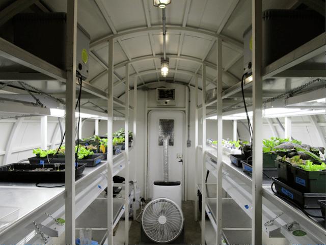 ILMAH greenhouse