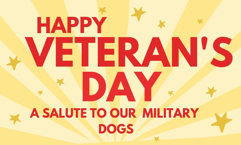A Veteran's Day Salute to Our Military Dogs!