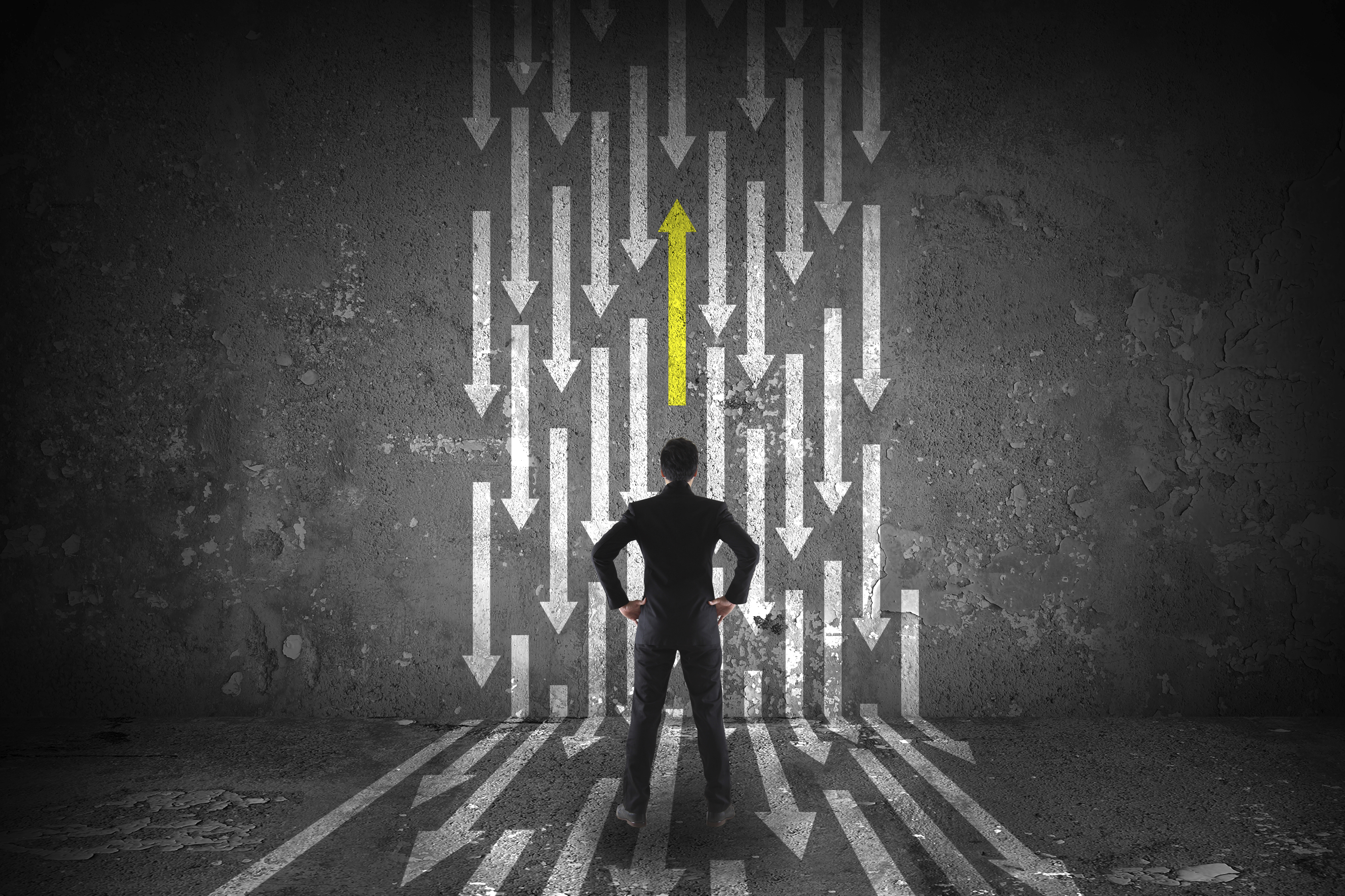 career-success-guidance