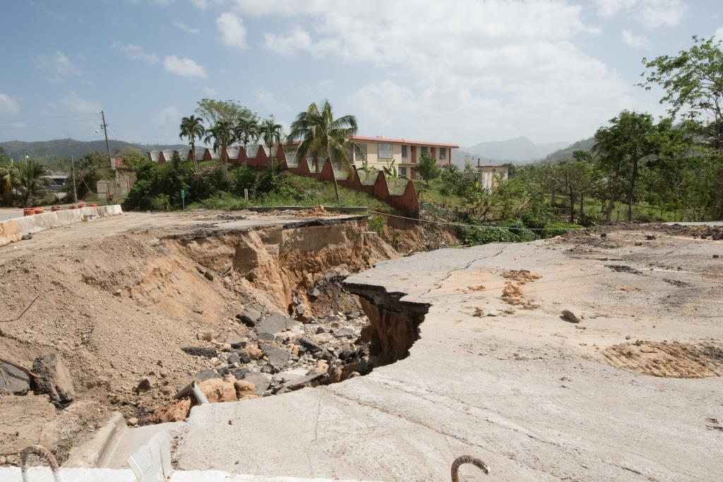 Imperfect Storm: Professionalism And Politics In Disaster Management