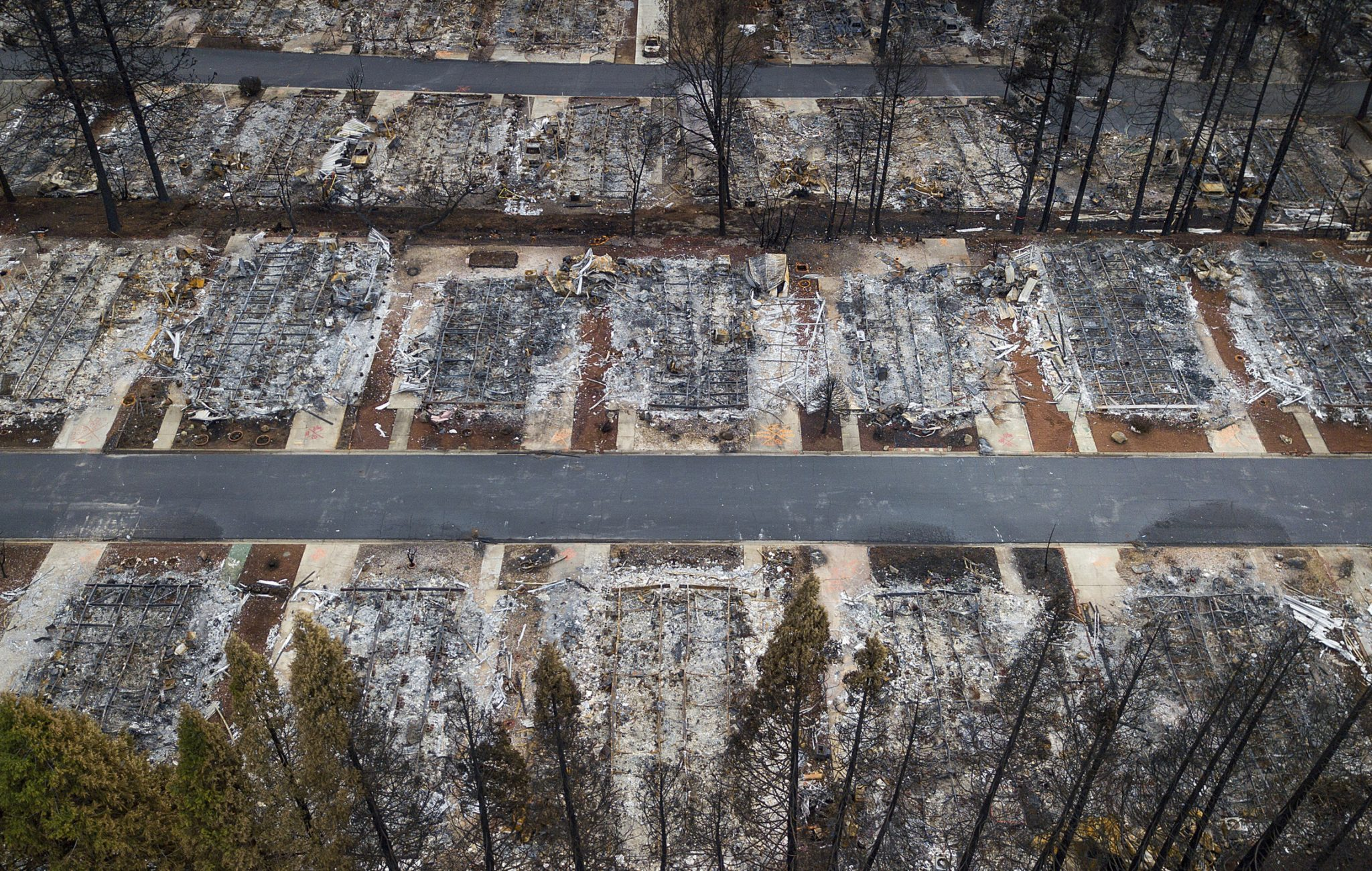 Insurance claims from deadly California wildfires top $12B