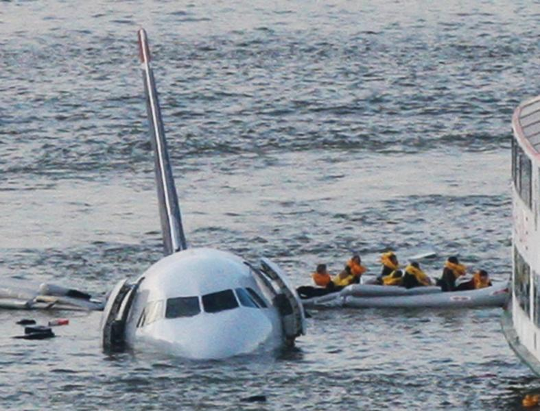 Blood In The Sky: 10 Years After The Miracle On The Hudson, Bird Strikes Remain An Unsolved Danger For Aviation